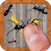 icono Ant Smasher by Best Cool & Fun Games