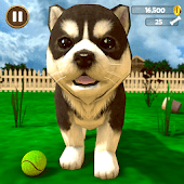 icono Simulador virtual de cachorros