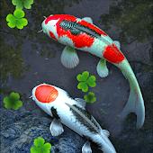 icono Estanque de Peces 3D Fondo
