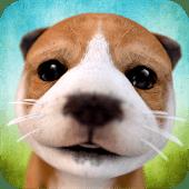 icono Simulador de Perros